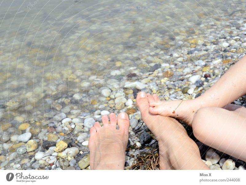 Füßeln Mensch Kind Ferien & Urlaub & Reisen Meer Sommer Strand Erwachsene klein Stein Beine See Fuß Freundschaft Familie & Verwandtschaft Kindheit Zusammensein