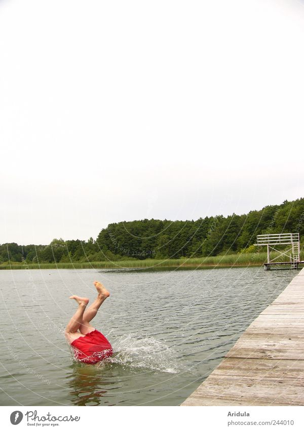 Kopfüber Mensch Himmel Mann Wasser grün rot Ferien & Urlaub & Reisen Sommer Freude Erwachsene Wald Erholung Landschaft Leben springen See