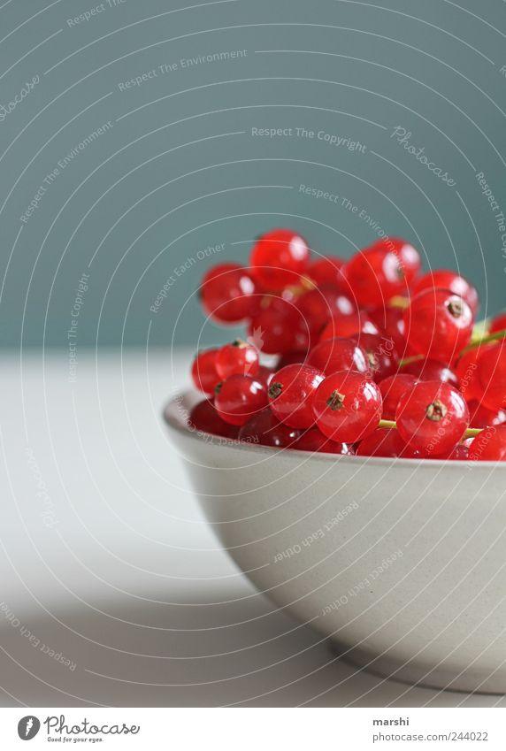 Johannes und Freunde Lebensmittel Frucht Ernährung Diät Geschirr Schalen & Schüsseln rot Johannisbeeren Beeren lecker rund klein Farbfoto