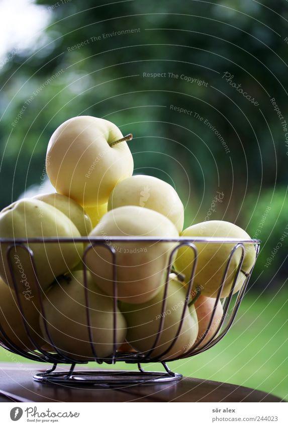 ausm Garten gepflückt Frucht Apfel Ernährung Bioprodukte Vegetarische Ernährung Diät Schalen & Schüsseln frisch Gesundheit lecker natürlich rund sauer süß gelb