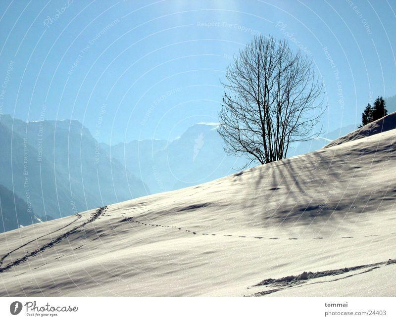 """""""Zigerschlitz"""" 2 Himmel weiß Baum Sonne blau Einsamkeit Schnee wandern Spuren Hügel Kanton Glarus"""