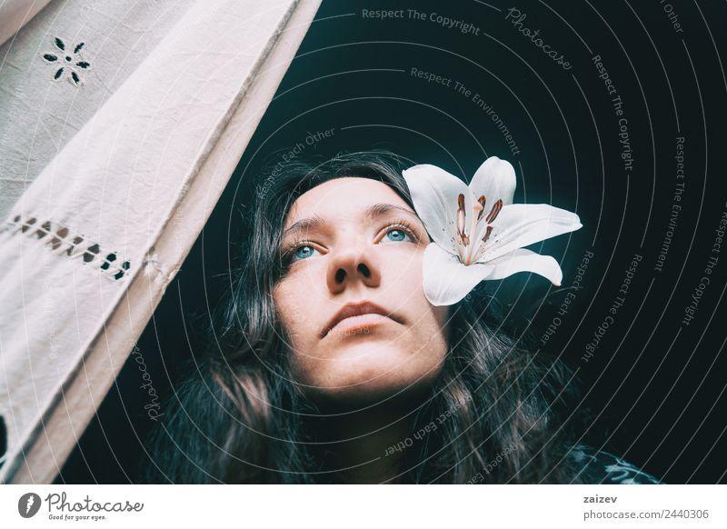 ein Mädchen mit einer weißen Lilie, die aus dem Fenster schaut. Lifestyle schön Gesicht Erholung ruhig Mensch feminin Junge Frau Jugendliche Erwachsene 1
