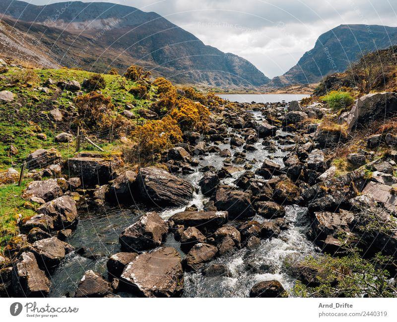 Irland - Gap of Dunloe Ferien & Urlaub & Reisen Tourismus Ausflug Freiheit Sightseeing Natur Landschaft Wasser Himmel Wolken Frühling Sommer Wiese Hügel Felsen