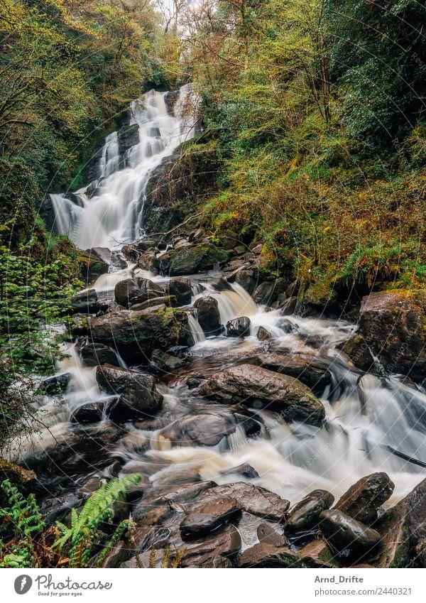 Irland - Torc Wasserfall Ferien & Urlaub & Reisen Tourismus Ausflug Abenteuer Sightseeing wandern Natur Landschaft Baum Sträucher Wald Hügel Felsen