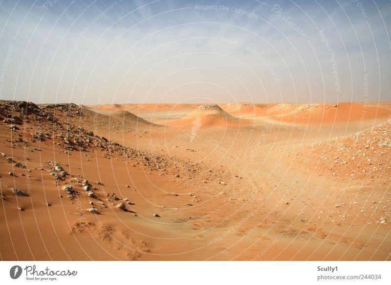 Wüste in Saudi Arabien Umwelt Natur Landschaft Urelemente Erde Sand Himmel Klima Schönes Wetter Hügel Strand atmen entdecken Blick Traurigkeit verblüht