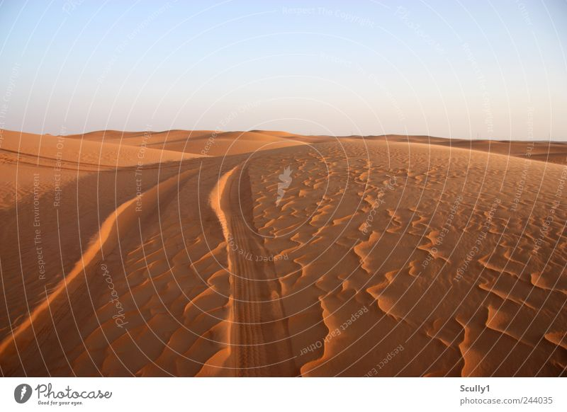 Wüste in Saudi Arabien Umwelt Natur Landschaft Urelemente Erde Sand Wolkenloser Himmel Klima Schönes Wetter Hügel Küste Strand Düne Abenteuer Beginn anstrengen