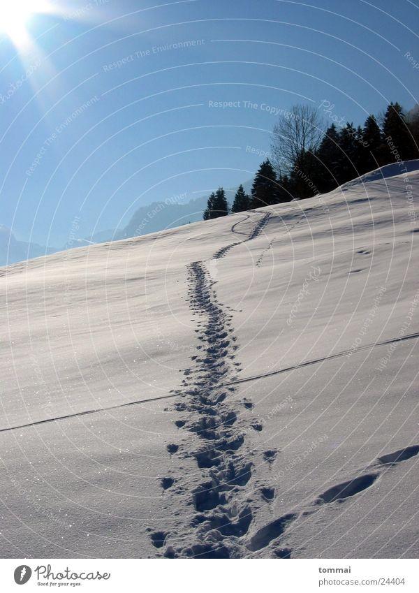 """""""Zigerschlitz"""" 1 Himmel weiß Sonne blau Schnee wandern Spuren Hügel Kanton Glarus"""