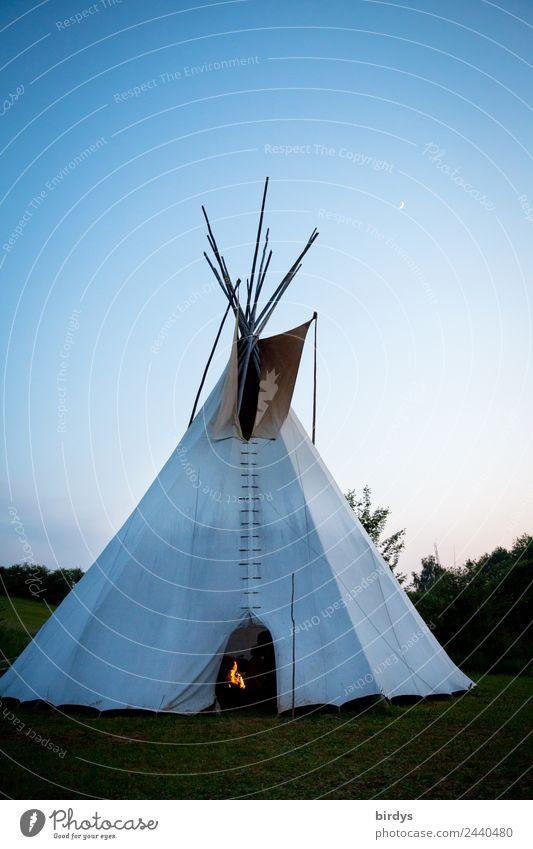 Home sweet home Erholung ruhig Camping Häusliches Leben Traumhaus Natur Feuer Wolkenloser Himmel Mond Sommer Baum Wiese genießen schlafen authentisch einfach