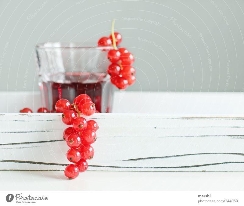 Johannisbeersaft weiß rot klein Glas Frucht Ernährung Lebensmittel Getränk rund trinken lecker Beeren Saft Geschmackssinn Erfrischungsgetränk sauer