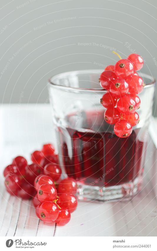 beeriger Saft Lebensmittel Frucht Ernährung Getränk trinken rot Beeren rund klein Glas durstig sauer geschmackvoll Geschmackssinn johannisbeersaft Farbfoto