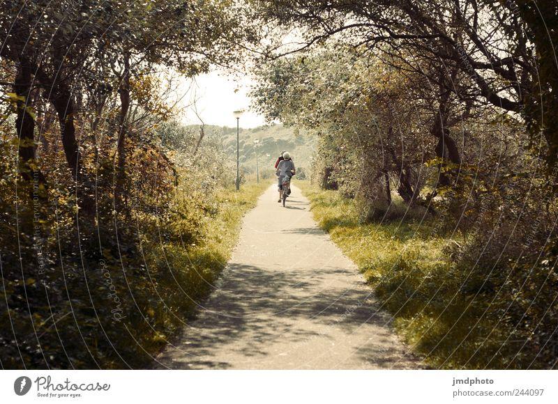 fahrradtour Natur Pflanze Sommer Freude Umwelt Landschaft Freiheit Bewegung Wege & Pfade Glück Freizeit & Hobby natürlich Ausflug frei Fröhlichkeit fahren