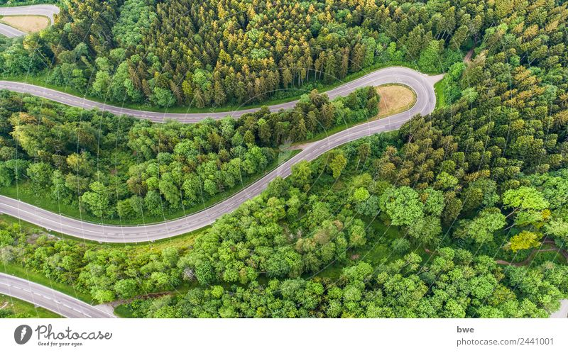 Mountain pass road Natur Ferien & Urlaub & Reisen Landschaft Baum Erholung Freude Ferne Straße Leben Umwelt Sport Tourismus Freiheit Ausflug gehen Zufriedenheit