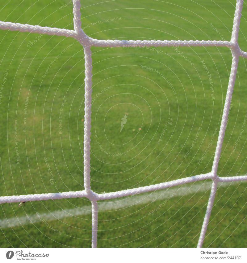 Toooor grün weiß Wiese Sport Linie Fußball Rasen Netz Sportrasen Quadrat Tor Raster Fußballplatz Fußballtor Sportplatz gepflegt
