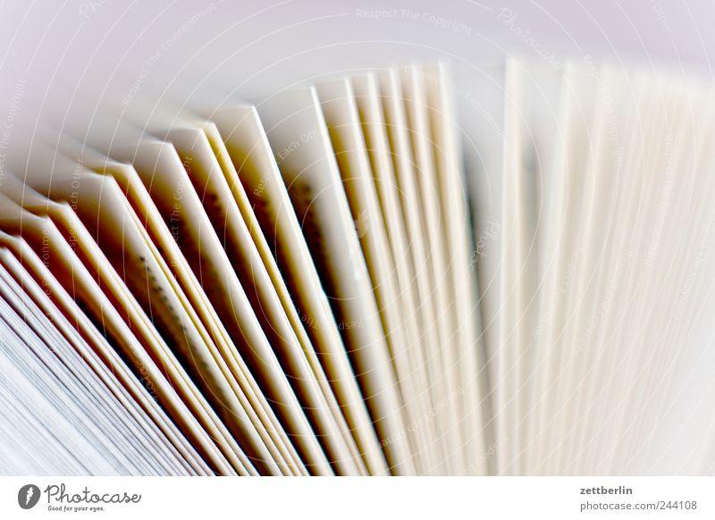 Papier Medien Printmedien Buch fantastisch Buchseite blättern Fächer Studium Lesestoff Farbfoto Gedeckte Farben Nahaufnahme Detailaufnahme Makroaufnahme
