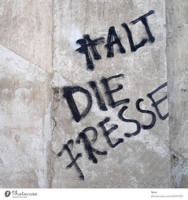 Halt die Fresse l UT Dresden Mauer Wand Schriftzeichen Graffiti Verachtung Wut Ärger gereizt Feindseligkeit Frustration Aggression Hass rebellieren Aussage