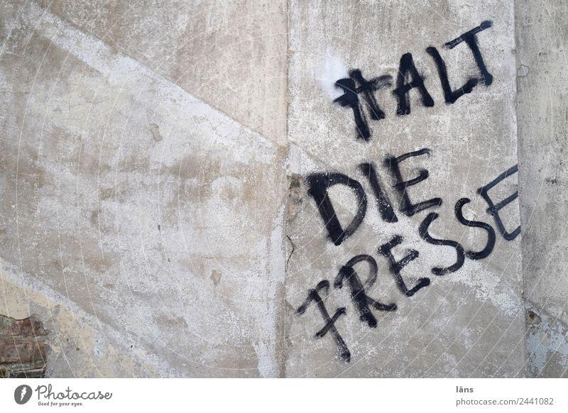 HALT DIE FRESSE l UT Dresden Schriftzeichen Graffiti Wand Ablehnung Aussage Gesicht Halt