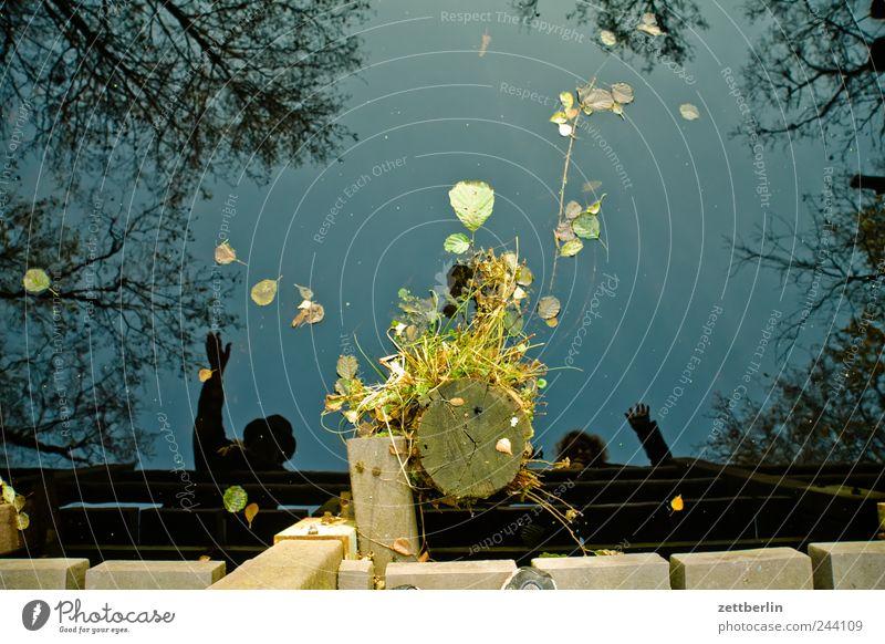Winken Mensch Natur Wasser Freude Herbst Küste Zufriedenheit Brücke Dorf Steg Teich Vogelperspektive November Sympathie Gruß Wasseroberfläche