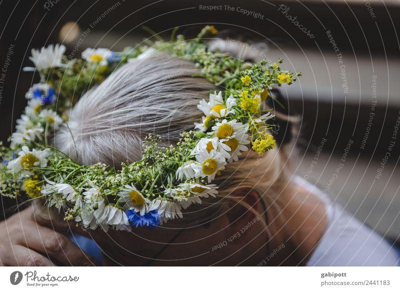 ... einen Kranz für dich | UT Dresden schön Blume Haare & Frisuren Kopf Fröhlichkeit Blumenstrauß Gänseblümchen Braut Kopfschmuck Haarband