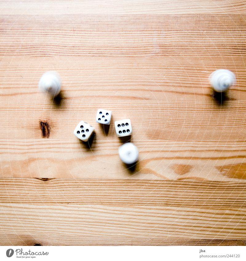 Würfel weiß schön ruhig Spielen Holz Bewegung hell braun gold elegant liegen Geschwindigkeit ästhetisch Ziffern & Zahlen Ast
