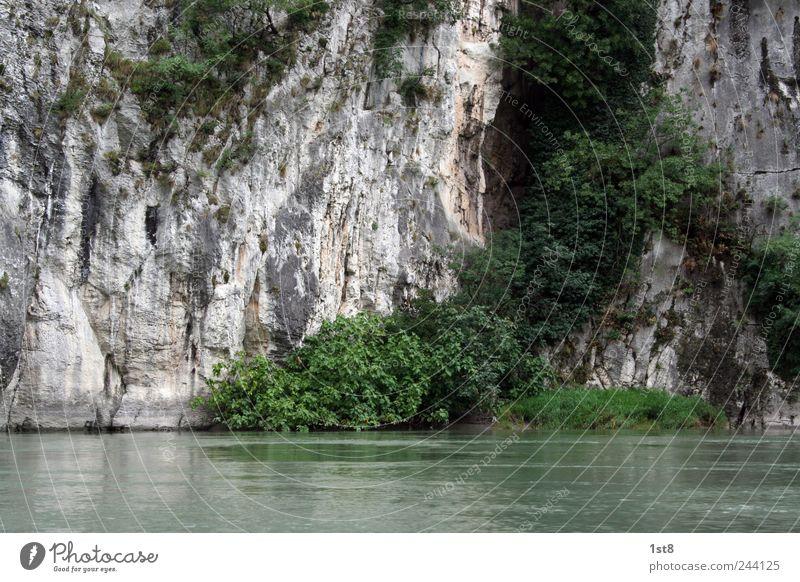 water rocks. Natur Wasser Baum schön Pflanze Sommer ruhig Blatt Bewegung Umwelt nass Felsen groß ästhetisch Schwimmen & Baden Fluss