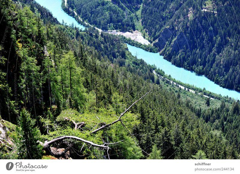Türkis ist Inn Natur Landschaft Wasser Schönes Wetter Wald Hügel Felsen Alpen Berge u. Gebirge Flussufer außergewöhnlich türkis Berghang Meerestiefe Nadelwald