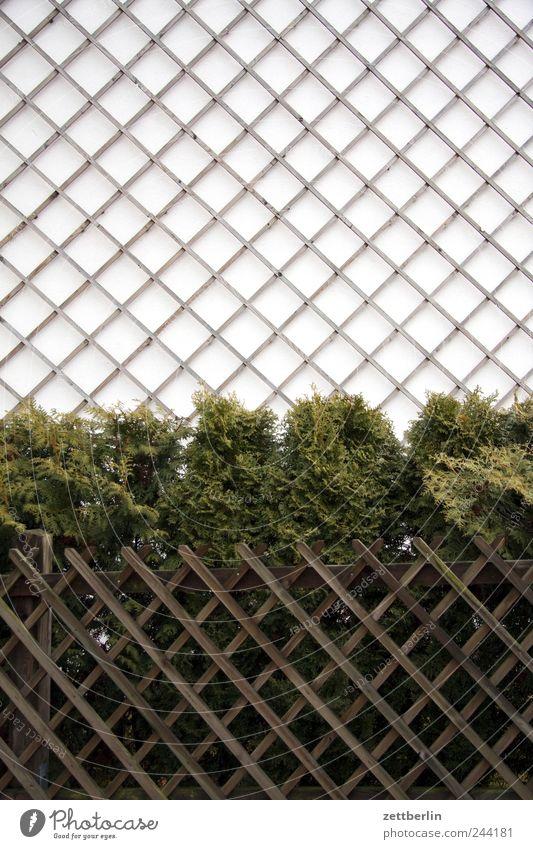 Einfamilienhaus Dorf Kleinstadt Stadtrand Menschenleer Haus Traumhaus Bauwerk Gebäude Architektur Mauer Wand Fassade Holz blond Traurigkeit Liebeskummer