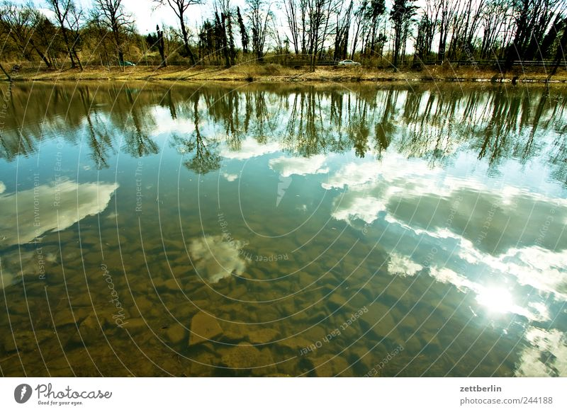 Hohenzollernkanal Umwelt Natur Landschaft Wasser Himmel Wolken Sonne Sonnenlicht Herbst Klima Klimawandel Wetter Schönes Wetter Baum Wellen Küste Seeufer