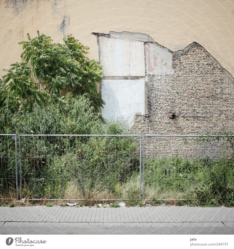 abriss Baum Pflanze Haus Straße Wand Gras Wege & Pfade Mauer Gebäude Fassade Baustelle Sträucher Bauwerk Zaun Demontage Abrissgebäude