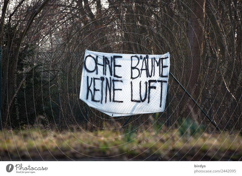 Protest gegen Abholzung Natur weiß Baum Wald schwarz braun Park Schriftzeichen authentisch Sträucher Zukunft Hinweisschild Klima Zukunftsangst Wut