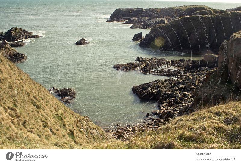 Klippen bei Dunnottar Umwelt Natur Landschaft Erde Wetter Schönes Wetter Pflanze Gras Hügel Küste Bucht Nordsee Wasser Meer Schottland Stein wandern wild blau