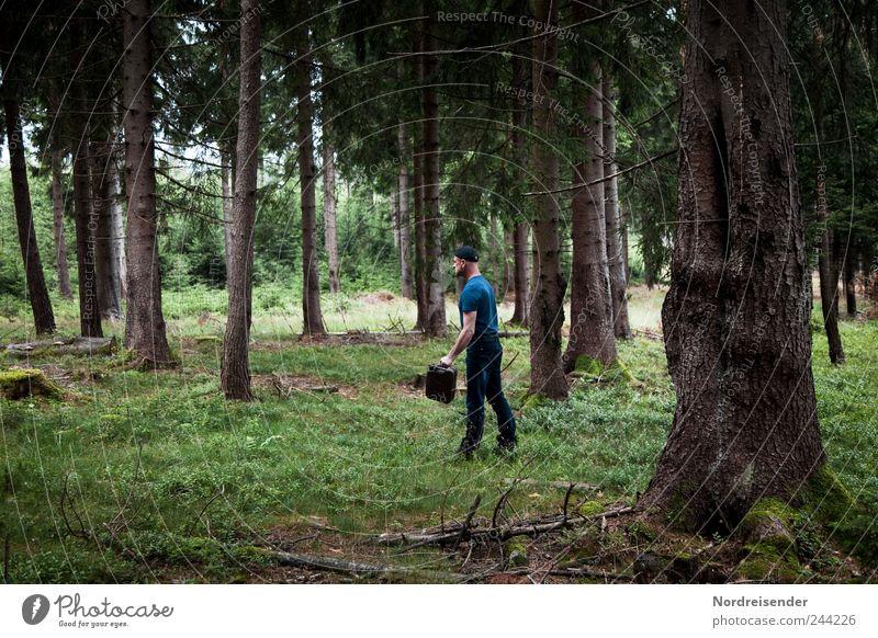 Trocken gefahren Mensch Mann Natur Pflanze Ferien & Urlaub & Reisen Sommer Wald Erwachsene Angst gehen Abenteuer Suche leer gefährlich dumm Stress