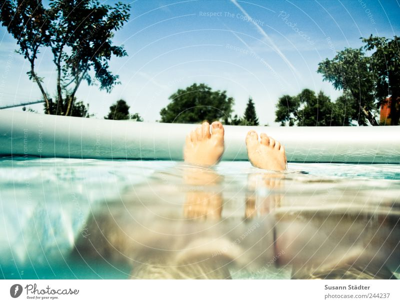 Daydream Freizeit & Hobby Frau Erwachsene Beine Fuß 1 Mensch Wasser Wassertropfen Wolkenloser Himmel Sommer Garten Schwimmen & Baden Schweben Erholung Spa
