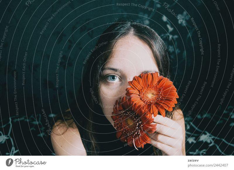 ein Mädchen mit blauen Augen und langem Haar, das sich mit einer Gerbera-Blüte bedeckt Lifestyle schön Gesicht Erholung Windstille Mensch Frau Erwachsene