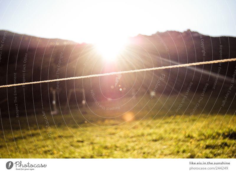 guten morgen! Natur Sommer Sonne Einsamkeit Landschaft ruhig Berge u. Gebirge Wiese Gras natürlich Lebensfreude Schönes Wetter Gipfel Alpen Weide