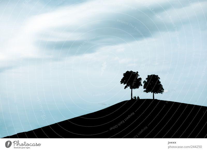Gipfeltreffen Mensch Himmel Baum Ferien & Urlaub & Reisen Wolken ruhig Erholung Park Paar Freundschaft Zufriedenheit Ausflug Hügel Schönes Wetter harmonisch