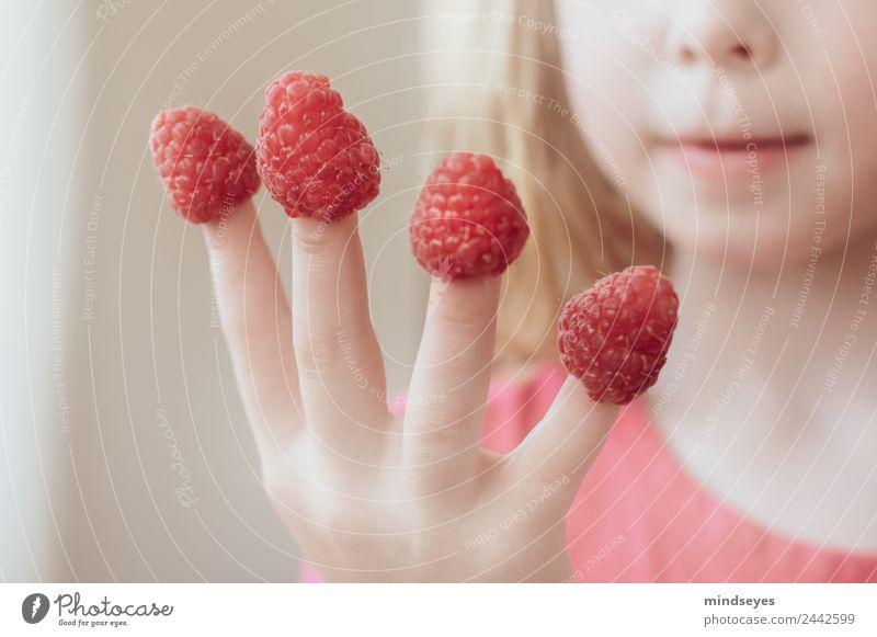 Himbeeren, die auf Mädchen-Fingern stecken Kind Mensch Farbe Hand Essen Gesundheit feminin Spielen rosa hell Wachstum blond Kindheit frisch Lächeln