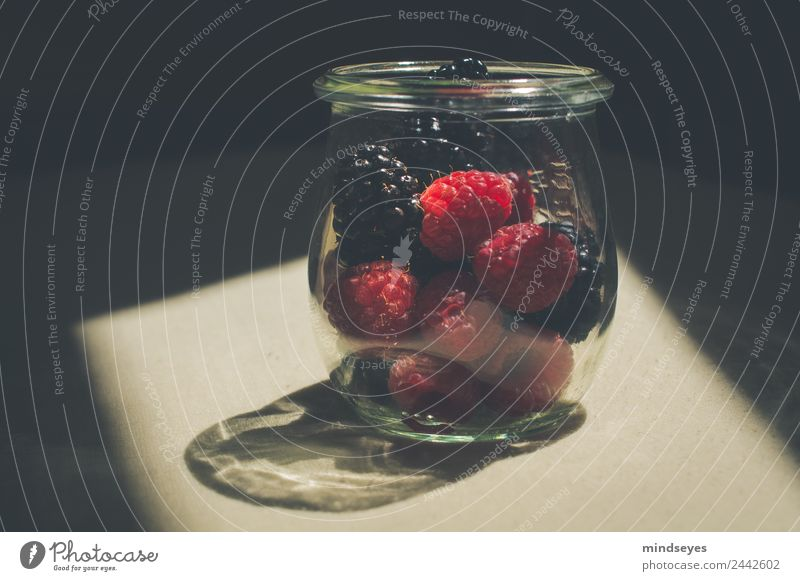 Waldbeeren im Glas im Sonnenlicht Frucht Ernährung Küche Brombeeren Himbeeren Einmachglas Essen genießen Wachstum glänzend lecker rot schwarz nachhaltig