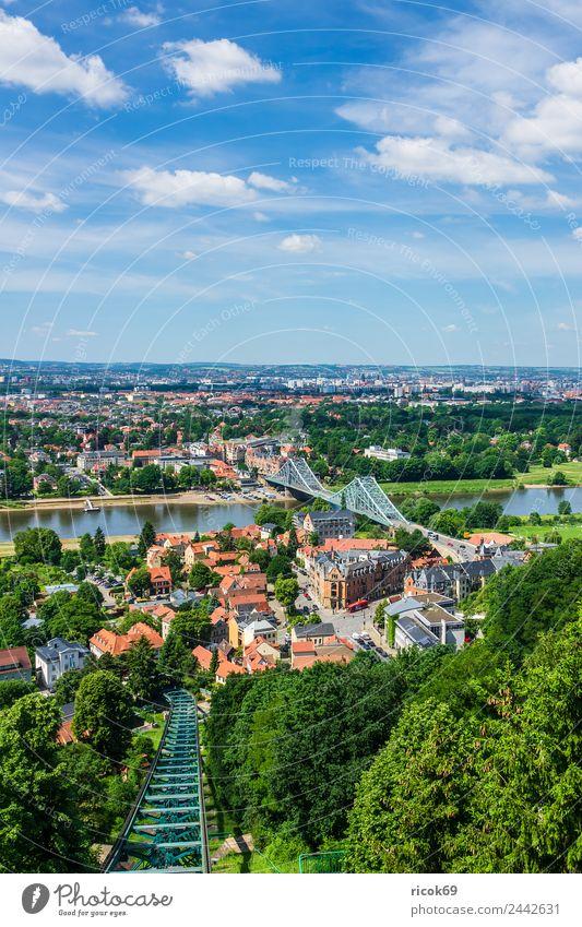 Blick über die Elbe auf Dresden Ferien & Urlaub & Reisen Tourismus Haus Wolken Baum Park Fluss Brücke Gebäude Architektur Sehenswürdigkeit blau grün Stadt