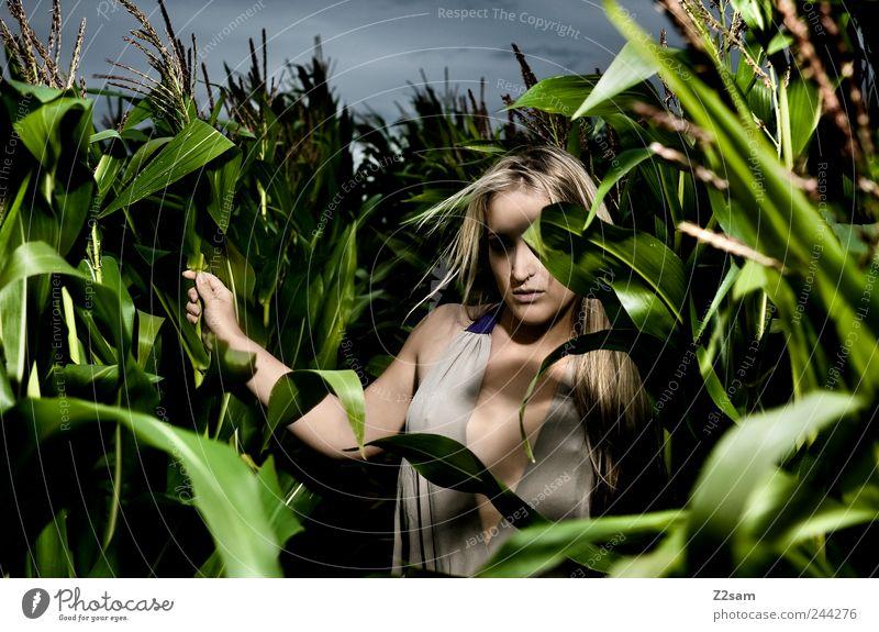In the Jungle Mensch Natur Jugendliche Sommer Einsamkeit dunkel feminin Landschaft Stil Erwachsene träumen Feld blond Angst gehen wild