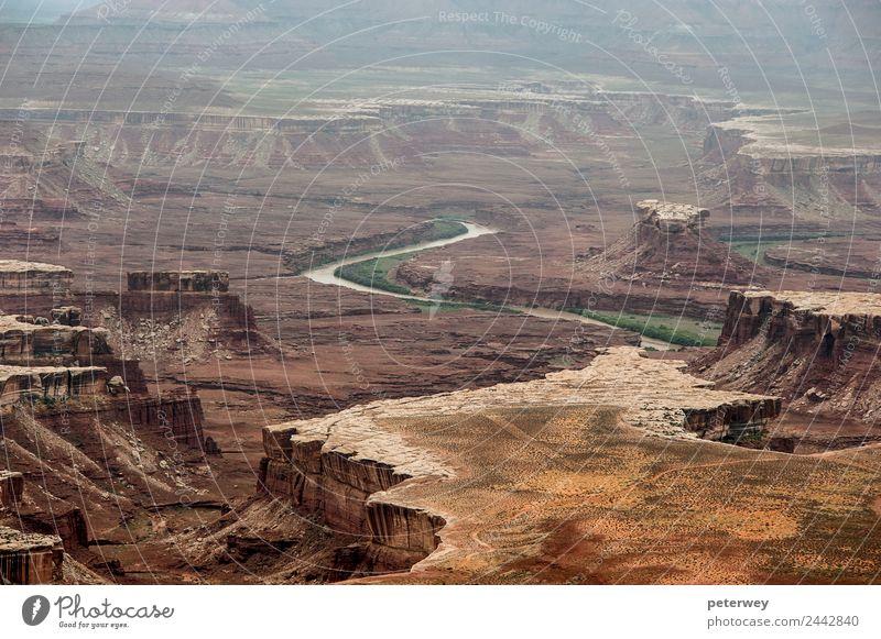 Distant canyons in Canyonlands National Park Ausflug wandern Natur Landschaft Erde Hügel Felsen Schlucht Fluss braun grün Freiheit above america Colorado