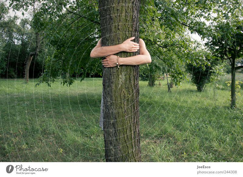 #244308 Frau Natur Baum Ferien & Urlaub & Reisen Sommer Erwachsene Erholung Spielen Umwelt Freiheit Gefühle Gras Garten Freundschaft Freizeit & Hobby Arme