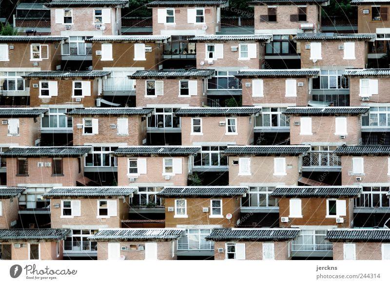 Stadt Haus Fenster Architektur Freundschaft Lifestyle Dach Schutz Geborgenheit Altstadt heimwärts Nachbar Gebäude Richtung Luftaufnahme Nachbarhaus