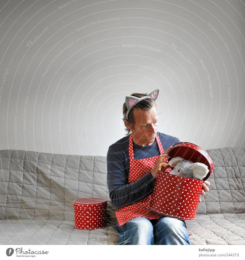 ... maus Mensch maskulin Mann Erwachsene 1 30-45 Jahre sitzen Maus Katze Punkt Schachtel Geschenk Überraschung Suche staunen aufmachen offen Gully Inhalt