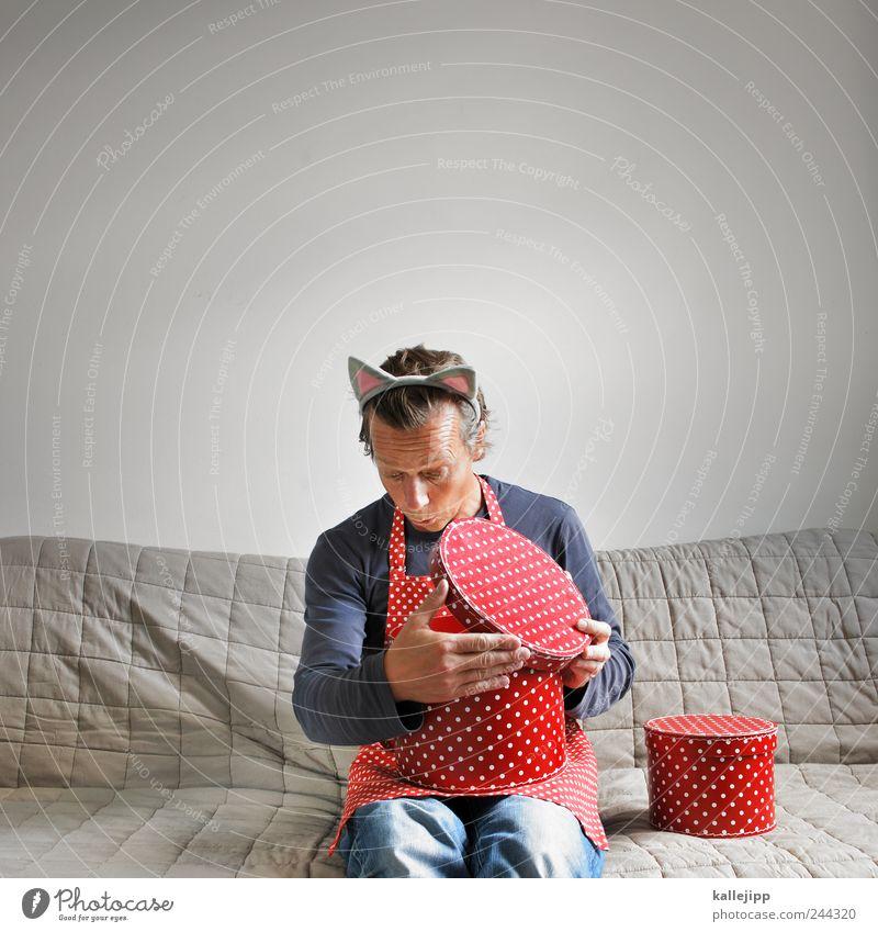 katz und ... Mensch maskulin Mann Erwachsene Leben 1 30-45 Jahre Jagd Blick sitzen Schachtel Punkt Schürze Katze Ohr aufmachen Verschlussdeckel Neugier offen