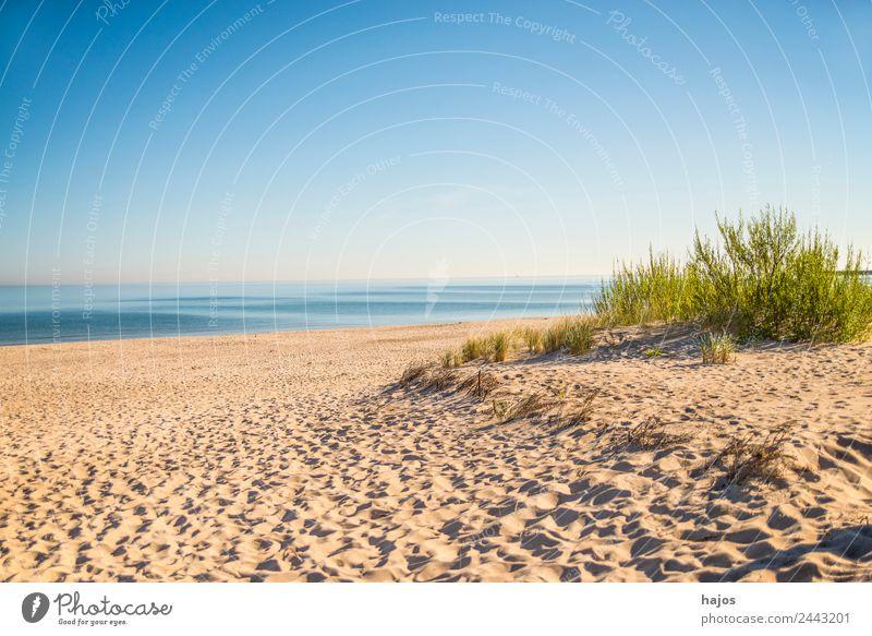 Strand an der polnischen Ostseeküste Umwelt maritim Idylle Sandstrand Strandhafer Meer blau Himmel leer einsam wild menschenleer Ferien & Urlaub & Reisen