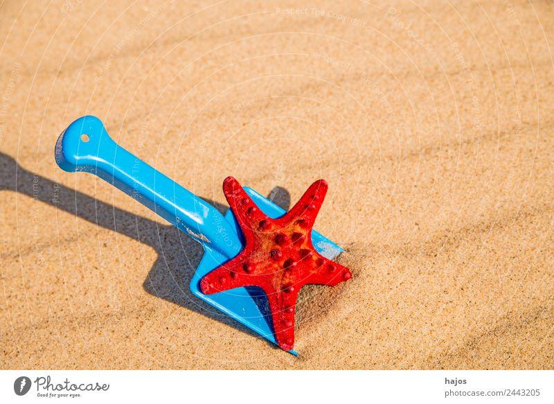Sandstrand mit Spiezeugschaufel und Seestern Freude Erholung Ferien & Urlaub & Reisen Sommer Strand Kind blau gelb rot Tourismus Schaufel Spielzeug spi sandeln