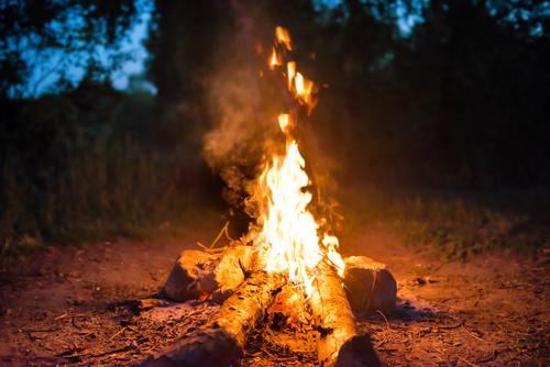 Lagerfeuer im Wald Freude Freizeit & Hobby Ferien & Urlaub & Reisen Tourismus Ausflug Abenteuer Expedition Camping Sommer Feste & Feiern Natur Landschaft Feuer