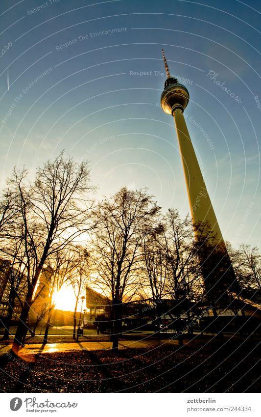 Gernsehturm Himmel Baum Stadt Berlin Gefühle Gebäude Architektur Turm Bauwerk Stadtzentrum Wahrzeichen Berliner Fernsehturm Hauptstadt Sehenswürdigkeit Dezember