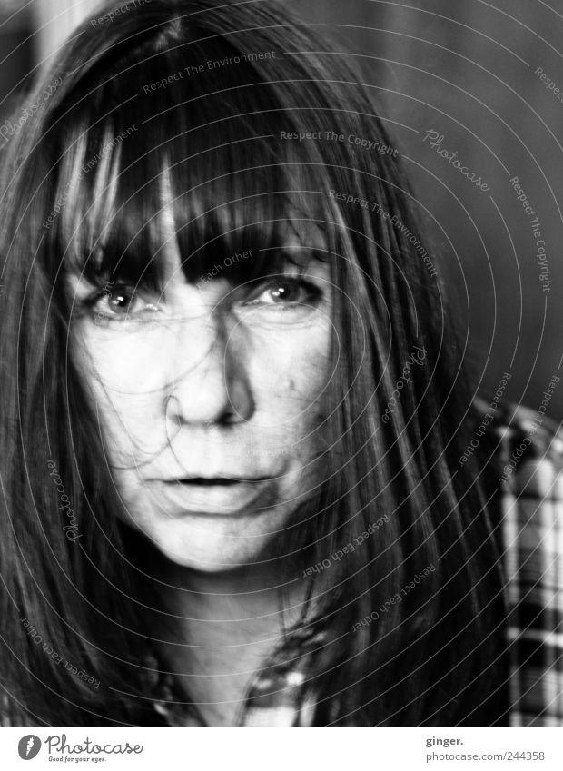 [300] x Je ne regrette rien! Frau Mensch Gesicht Leben feminin sprechen Kopf Haare & Frisuren Erwachsene trashig direkt Gesichtsausdruck chaotisch 45-60 Jahre