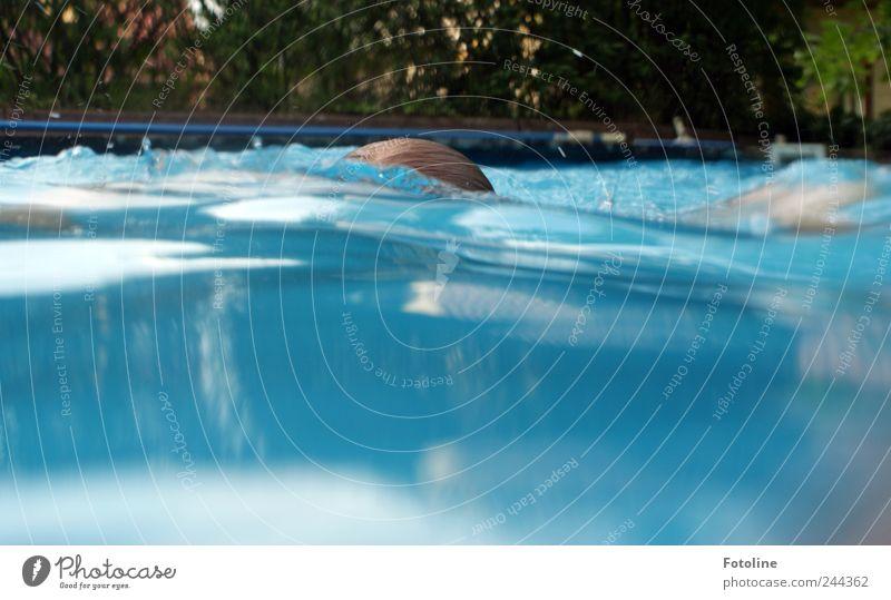 Erfrischend Mensch feminin Kindheit Natur Pflanze Urelemente Wasser Sommer hell nass blau grün Schwimmbad Hecke Schwimmsport tauchen Unterwasseraufnahme